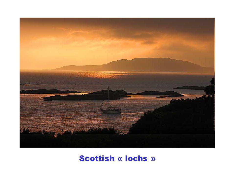 Scottish « lochs »