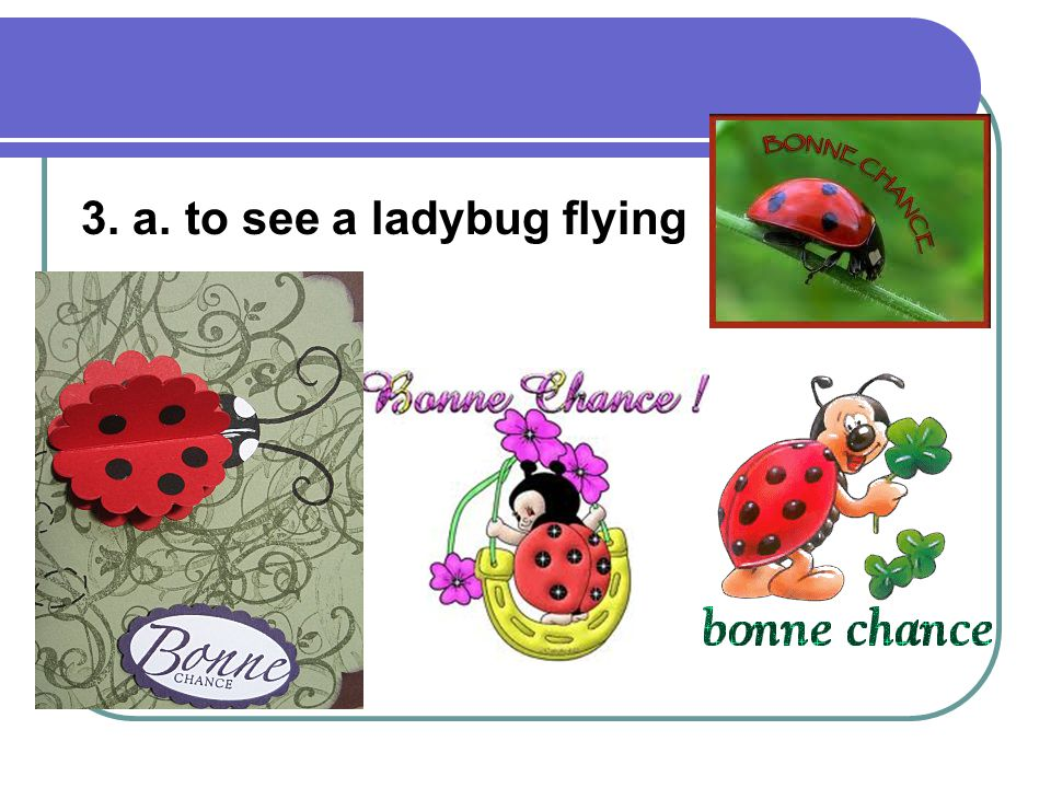 3. a. to see a ladybug flying