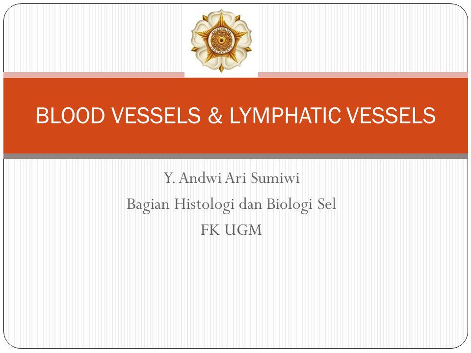 Y. Andwi Ari Sumiwi Bagian Histologi dan Biologi Sel FK UGM BLOOD VESSELS & LYMPHATIC VESSELS