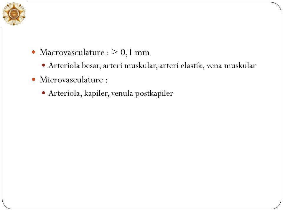 Macrovasculature : > 0,1 mm Arteriola besar, arteri muskular, arteri elastik, vena muskular Microvasculature : Arteriola, kapiler, venula postkapiler