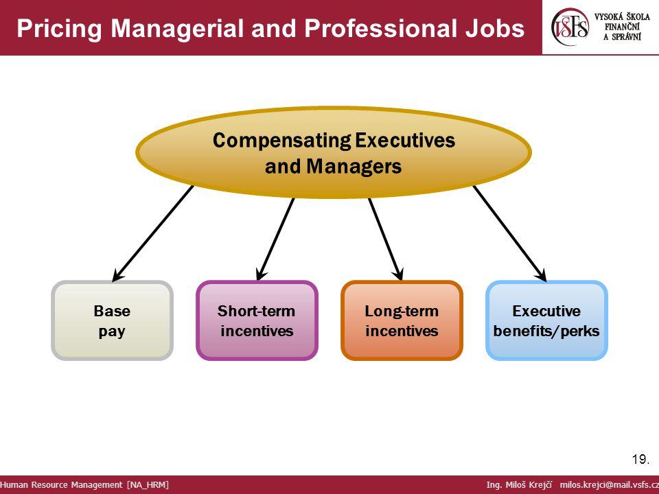 19. Pricing Managerial and Professional Jobs Human Resource Management [NA_HRM] Ing. Miloš Krejčí milos.krejci@mail.vsfs.cz Base pay Executive benefit