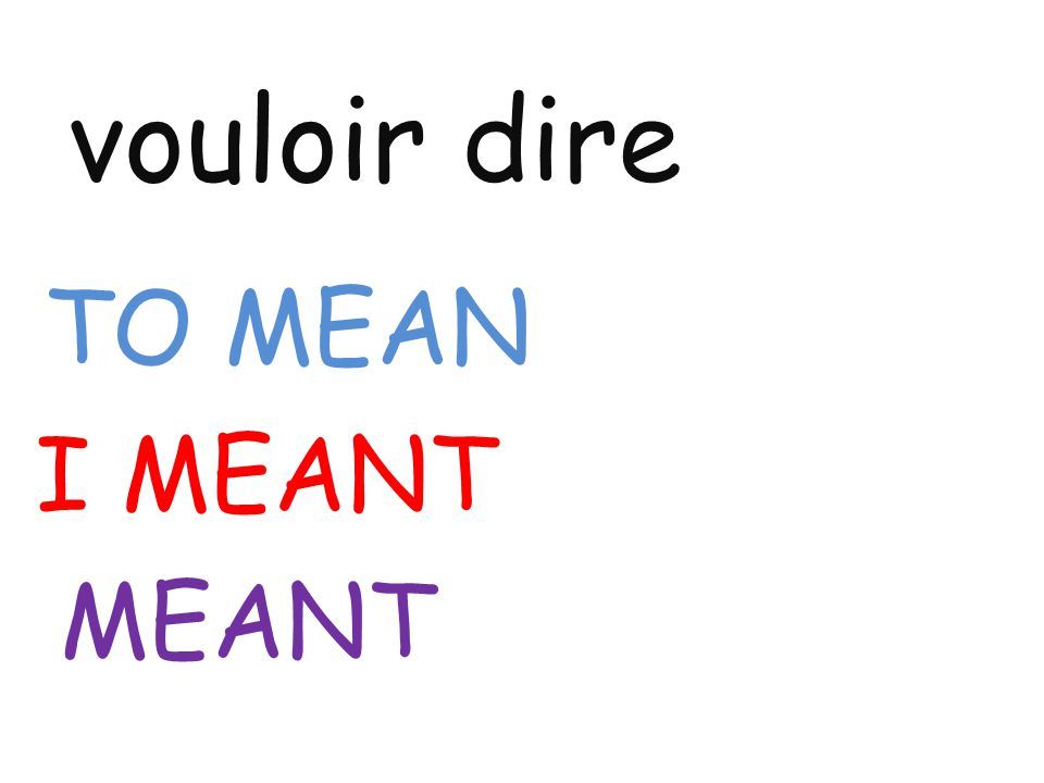 vouloir dire TO MEAN I MEANT MEANT