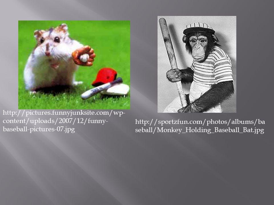 http://pictures.funnyjunksite.com/wp- content/uploads/2007/12/funny- baseball-pictures-07.jpg http://sportzfun.com/photos/albums/ba seball/Monkey_Holding_Baseball_Bat.jpg