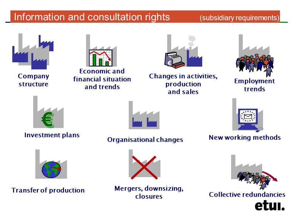 Company structure Employment trends Mergers, downsizing, closures Economic and financial situation and trends New working methods Organisational changes Investment plans €€ Transfer of production Collective redundancies € Changes in activities, production and sales Information and consultation rights (subsidiary requirements)