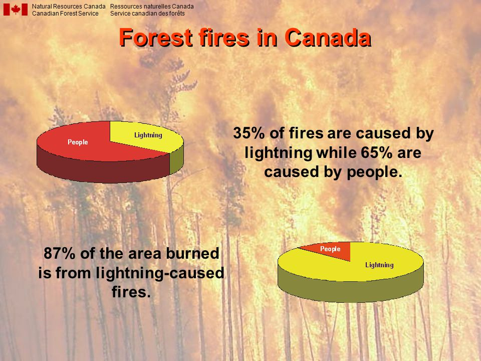Forest fires in Canada Natural Resources Canada Canadian Forest Service Ressources naturelles Canada Service canadian des forêts 35% of fires are caused by lightning while 65% are caused by people.