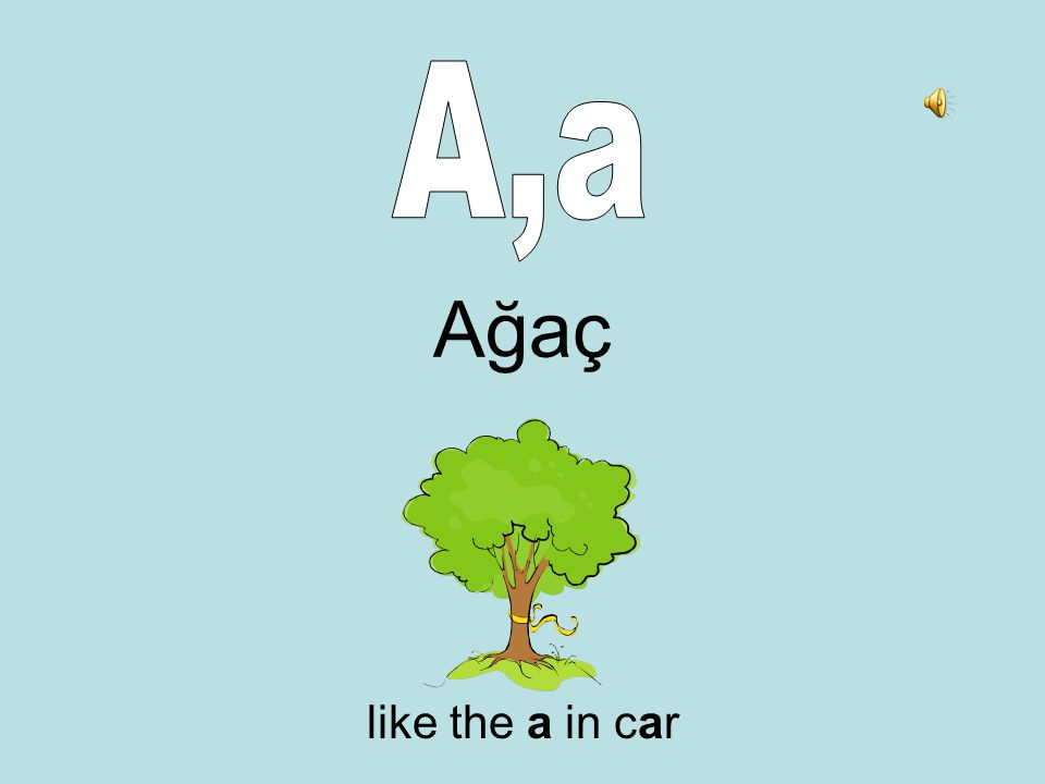 Ağaç like the a in car