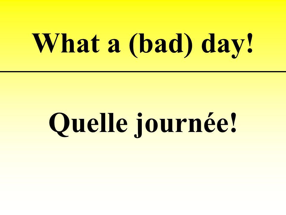 What a (bad) day! Quelle journée!