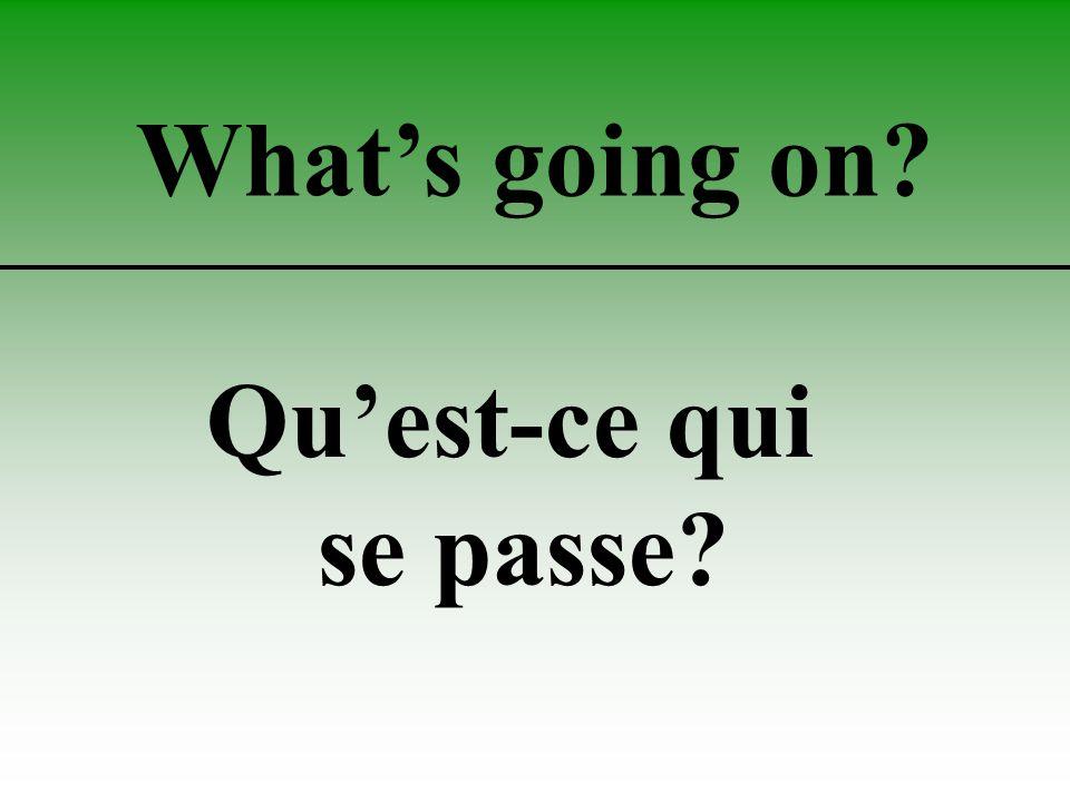What's going on Qu'est-ce qui se passe