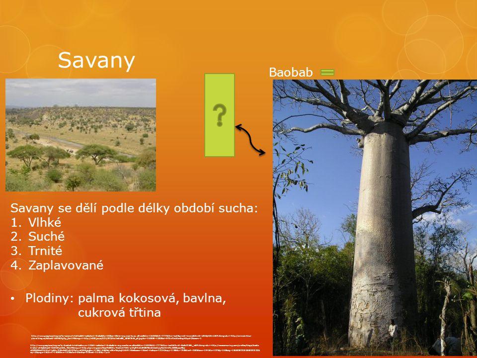Savany http://www.google.cz/imgres q=savany+v+africe&hl=cs&client=firefox&hs=iIK&sa=X&rls=org.mozilla:cs:official&biw=1600&bih=777&tbm=isch&prmd=imvns&tbnid=vE26yh3l4rL40M:&imgrefurl=http://animals-blue- planet.blog.cz/&docid=69H8Sg0g_OznVM&imgurl=http://nd03.jxs.cz/824/972/da1bc8c8f8_63897646_o2.jpg&w=1600&h=1200&ei=WT2wTteUCsvSsgbSqo1C&zoom=1 http://www.google.cz/imgres q=baobab+v+africe&num=10&hl=cs&client=firefox&rls=org.mozilla:cs:official&biw=1600&bih=777&tbm=isch&tbnid=BaEaT1kEL_loEM:&imgrefurl=http://novazeme.ning.com/profiles/blogs/baoba b-obor-afriky&docid=bDhOhqbSS_TOmM&imgurl=http://api.ning.com/files/PvkNt5u-RoiAL27HH1-pWLjPrhxCn9OEM5mbCAxJ1jLyMsIZ1CMu1NNEyxqYEq- z0NFHSBx33btKw1VgGAuTtAfmNc8IuRLY/Picture034B.jpg&w=416&h=556&ei=oT6wToLyLcjItAb914Bo&zoom=1&iact=hc&vpx=1224&vpy=119&dur=749&hovh=260&hovw=194&tx=127&ty=158&sig=106629072010650233122& sqi=2&page=1&tbnh=140&tbnw=101&start=0&ndsp=34&ved=1t:429,r:7,s:0 Savany se dělí podle délky období sucha: 1.Vlhké 2.Suché 3.Trnité 4.Zaplavované Plodiny: palma kokosová, bavlna, cukrová třtina Baobab