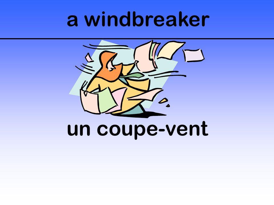 a windbreaker un coupe-vent
