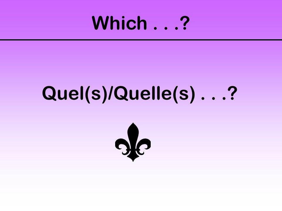 Which... Quel(s)/Quelle(s)...