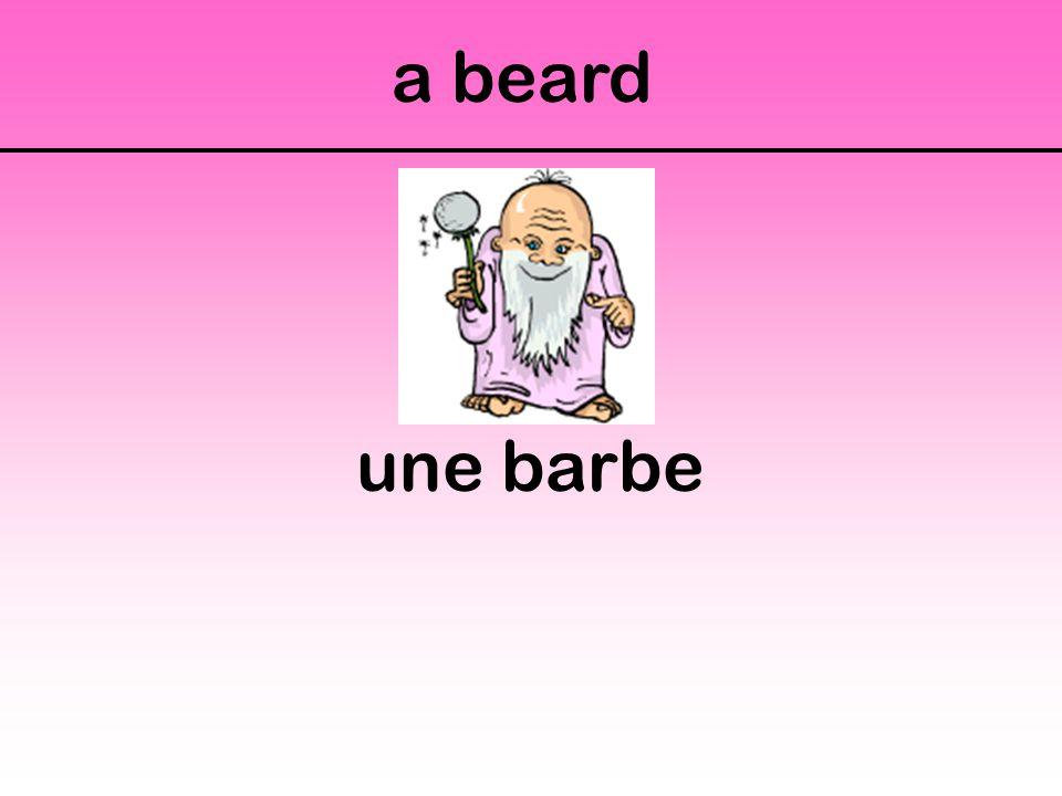 a beard une barbe