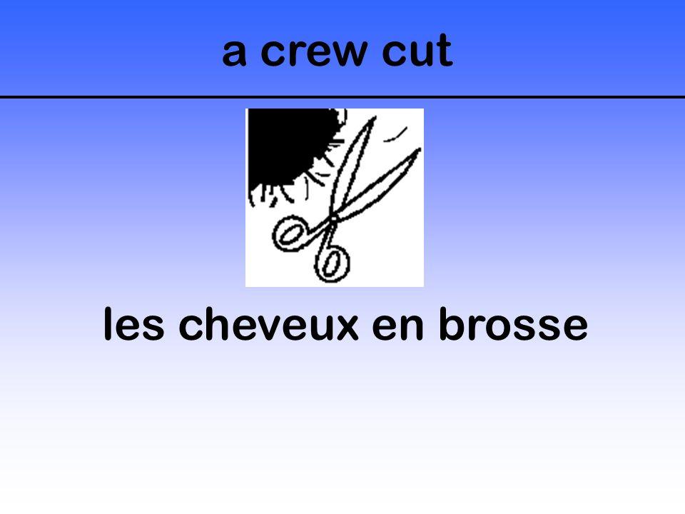 a crew cut les cheveux en brosse