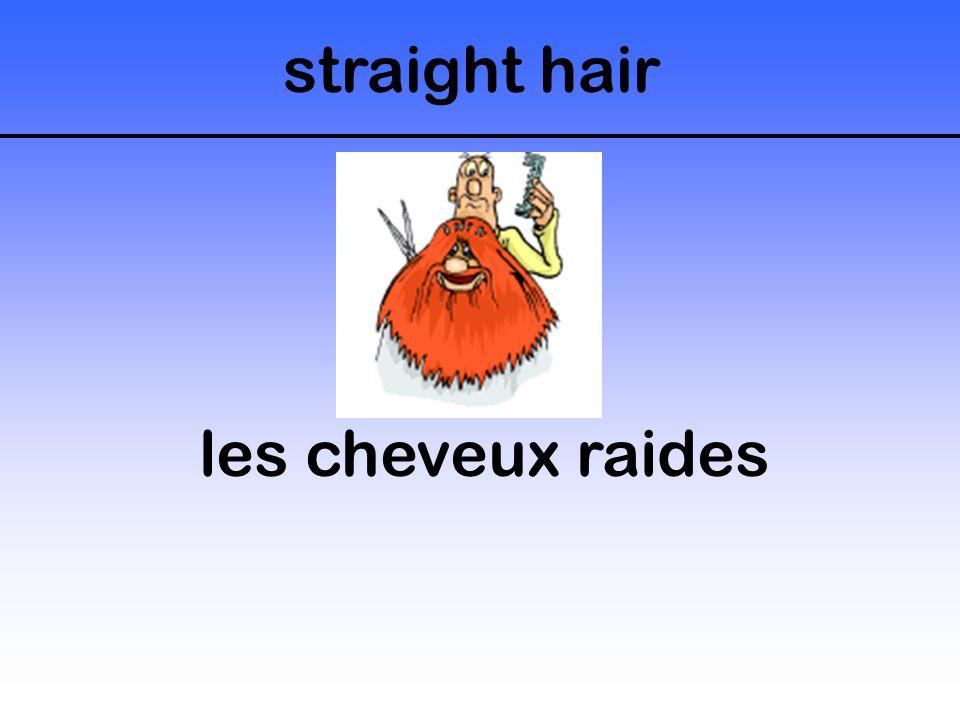 straight hair les cheveux raides