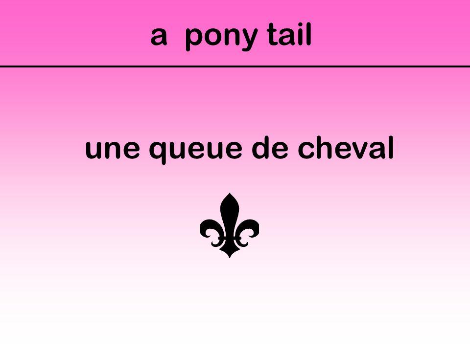 a pony tail une queue de cheval