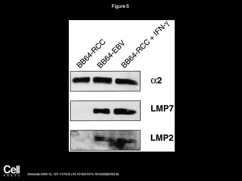 Figure 5 Immunity 2000 12, 107-117DOI: (10.1016/S1074-7613(00)80163-6)
