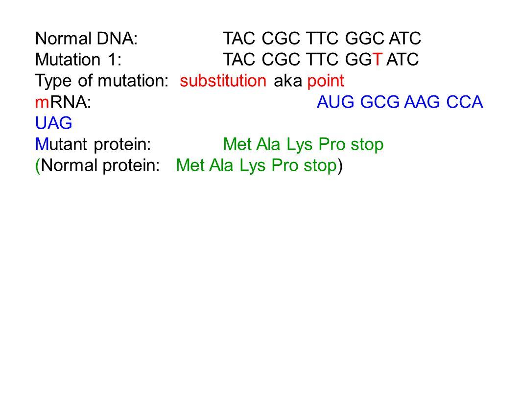 Normal DNA: TAC CGC TTC GGC ATC Mutation 1:TAC CGC TTC GGT ATC Type of mutation: substitution aka point mRNA:AUG GCG AAG CCA UAG Mutant protein:Met Ala Lys Pro stop (Normal protein:Met Ala Lys Pro stop)