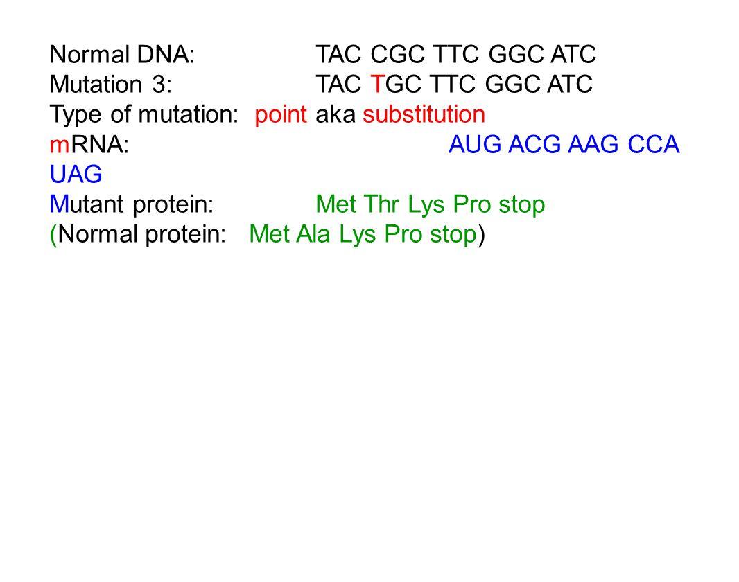 Normal DNA: TAC CGC TTC GGC ATC Mutation 3:TAC TGC TTC GGC ATC Type of mutation: point aka substitution mRNA:AUG ACG AAG CCA UAG Mutant protein:Met Thr Lys Pro stop (Normal protein:Met Ala Lys Pro stop)