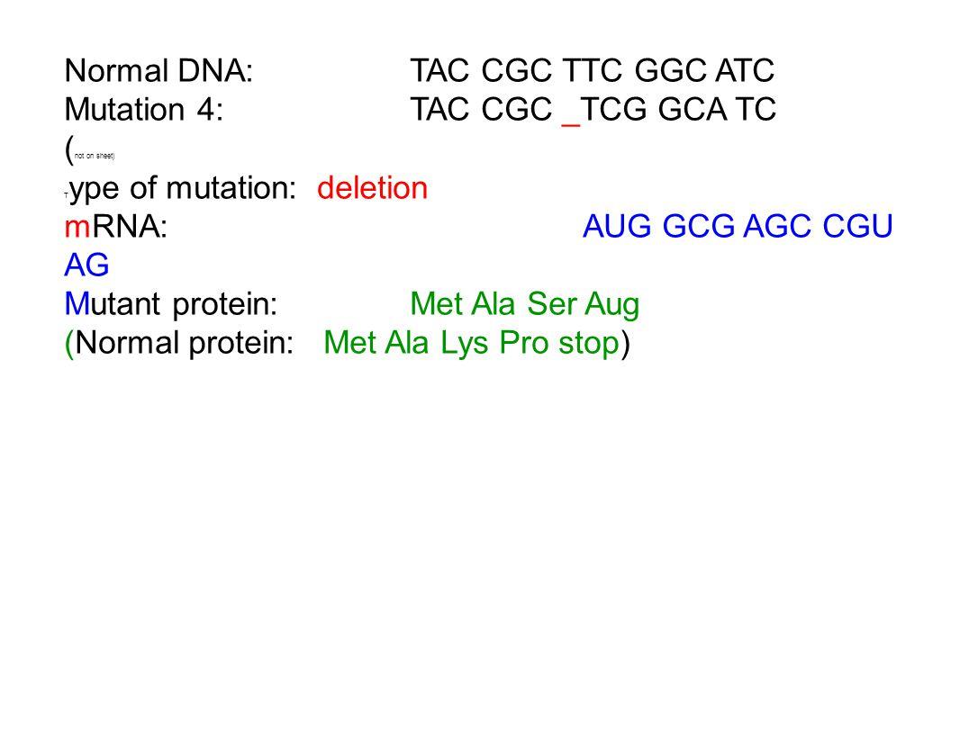 Normal DNA: TAC CGC TTC GGC ATC Mutation 4:TAC CGC _TCG GCA TC ( not on sheet) T ype of mutation: deletion mRNA:AUG GCG AGC CGU AG Mutant protein:Met Ala Ser Aug (Normal protein:Met Ala Lys Pro stop)