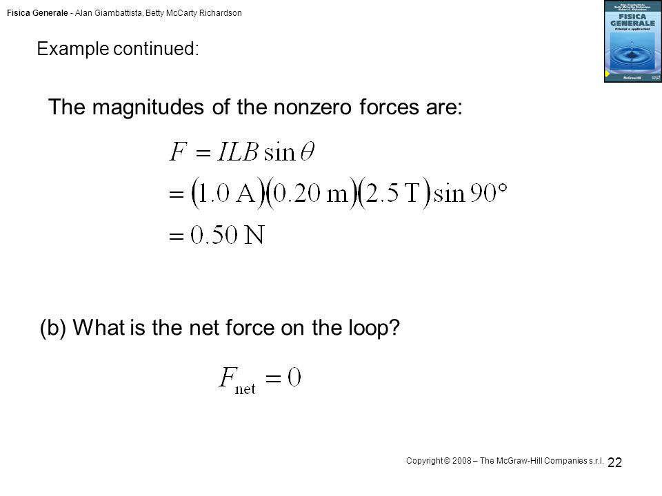 Fisica Generale - Alan Giambattista, Betty McCarty Richardson Copyright © 2008 – The McGraw-Hill Companies s.r.l. 22 The magnitudes of the nonzero for
