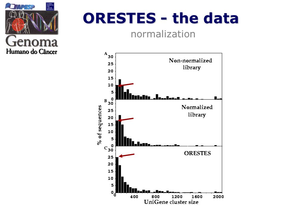 ORESTES - the data normalization