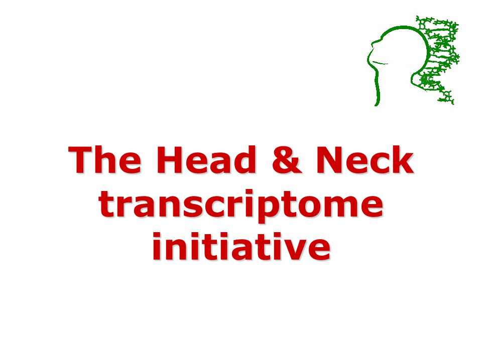 The Head & Neck transcriptome initiative