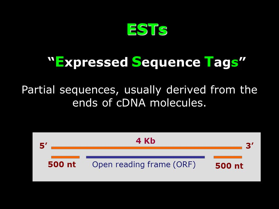 ESTs E xpressed S equence T ags Partial sequences, usually derived from the ends of cDNA molecules.