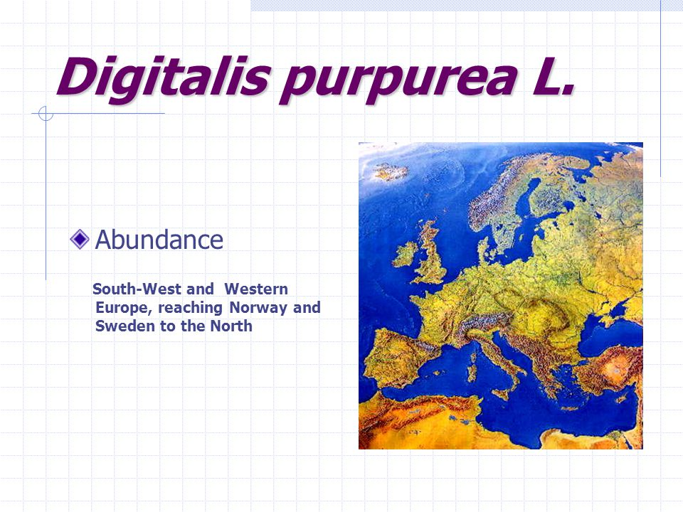 Digitalis purpurea L. Abundance South-West and Western Europe, reaching Norway and Sweden to the North