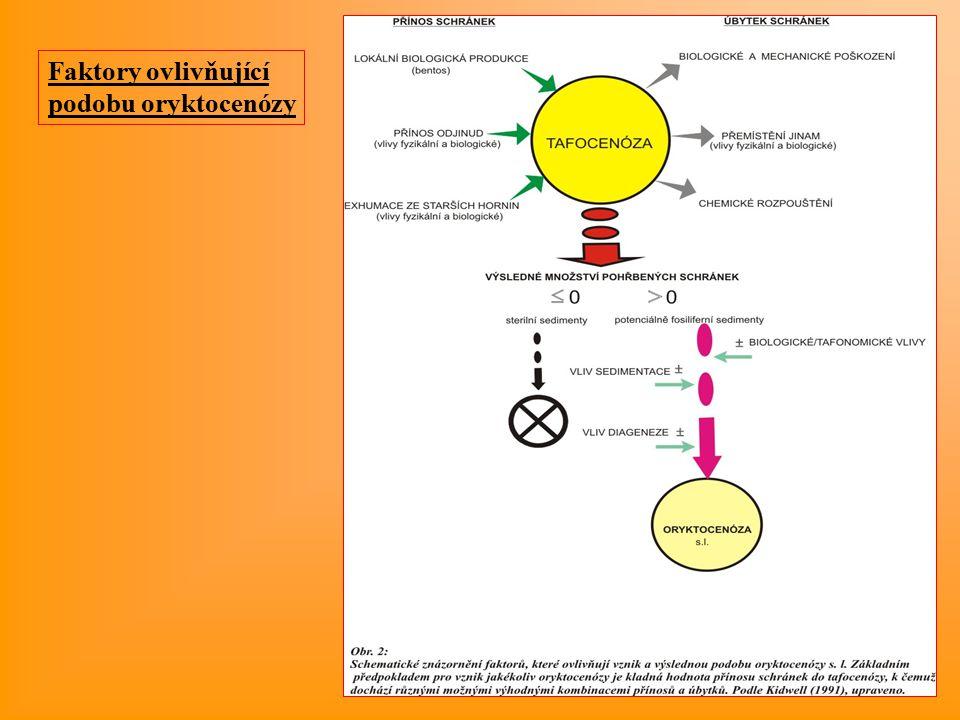 Faktory ovlivňující podobu oryktocenózy