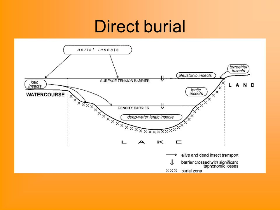 Direct burial