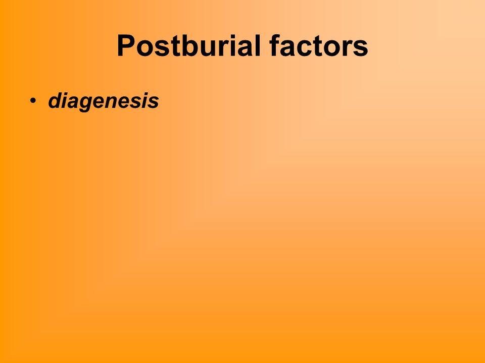 Postburial factors diagenesis