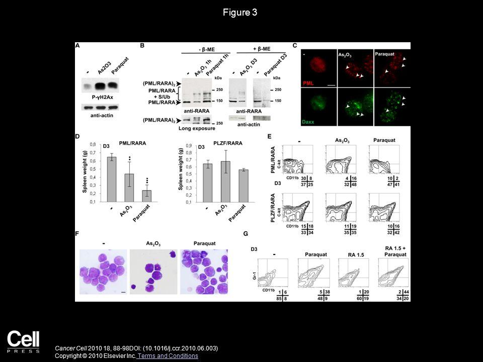 Figure 3 Cancer Cell 2010 18, 88-98DOI: (10.1016/j.ccr.2010.06.003) Copyright © 2010 Elsevier Inc.