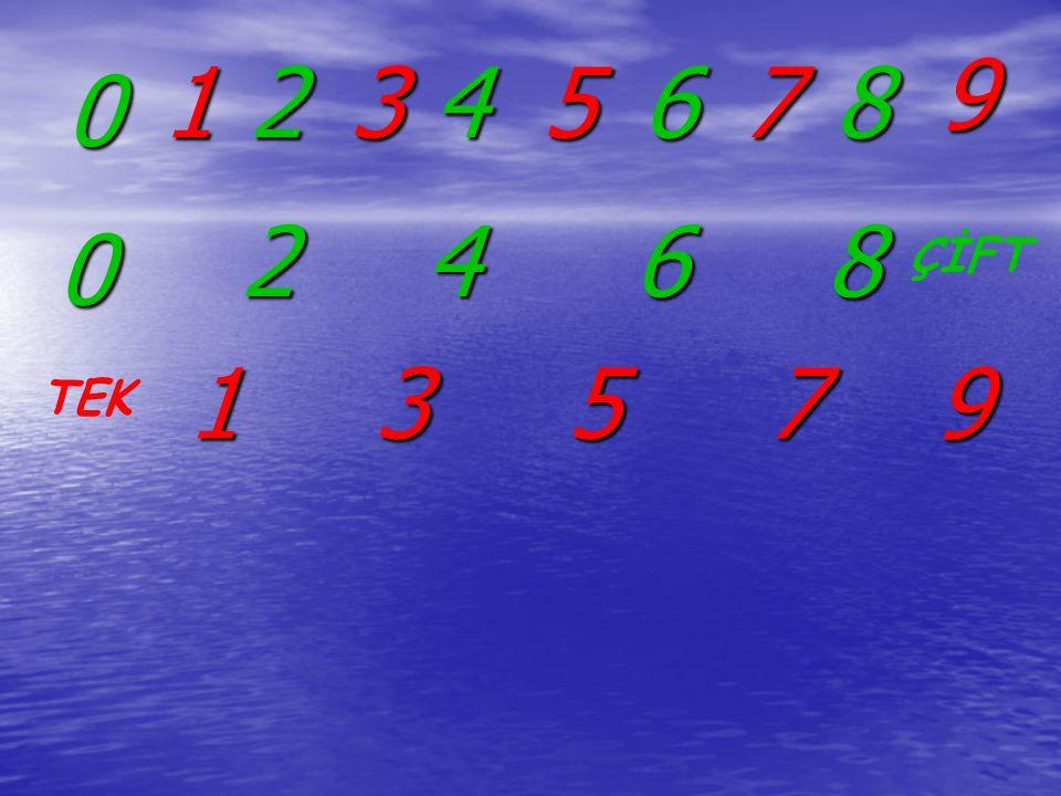 1 6 37 5 2 9 0 4 8 6 2 0 4 8 137 59 ÇİFT TEK