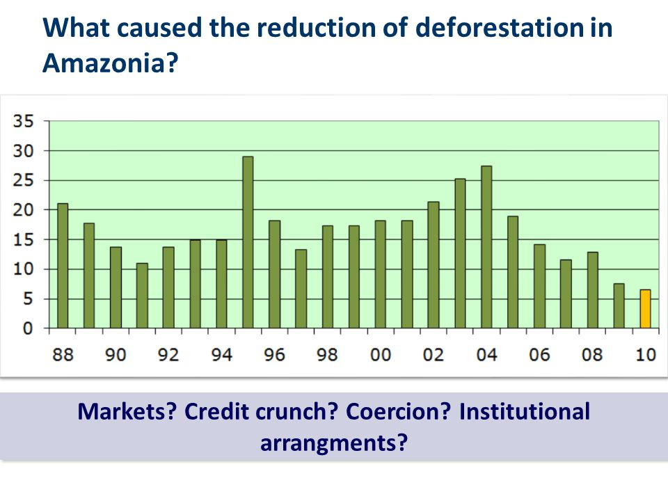 What caused the reduction of deforestation in Amazonia? Markets? Credit crunch? Coercion? Institutional arrangments?