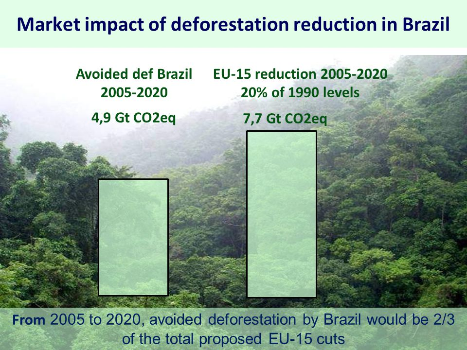 What caused the reduction of deforestation in Amazonia.