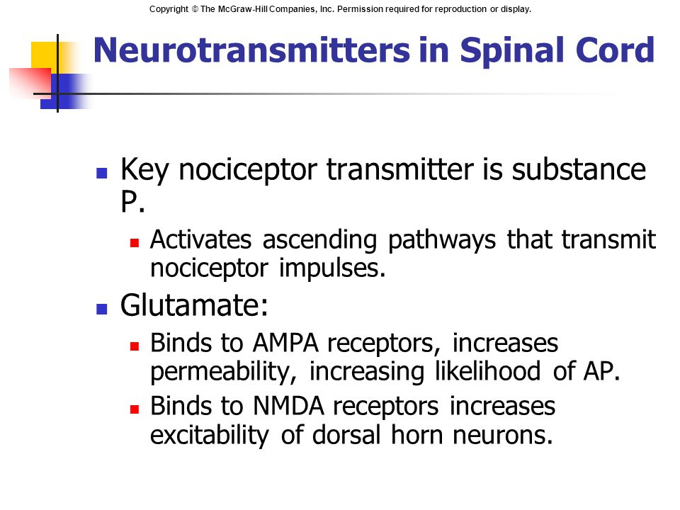 Copyright © The McGraw-Hill Companies, Inc. Permission required for reproduction or display. Key nociceptor transmitter is substance P. Activates asce