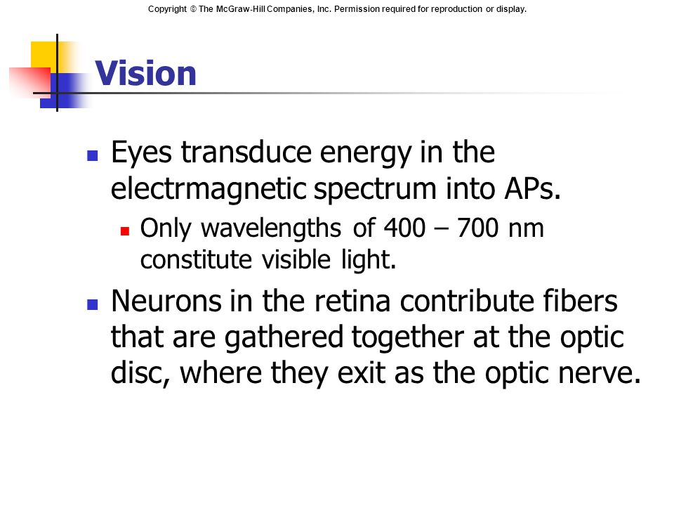 Copyright © The McGraw-Hill Companies, Inc. Permission required for reproduction or display. Vision Eyes transduce energy in the electrmagnetic spectr