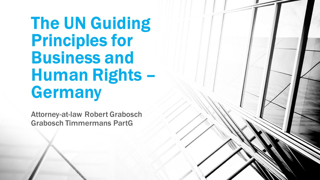 The UN Guiding Principles for Business and Human Rights – Germany Attorney-at-law Robert Grabosch Grabosch Timmermans PartG