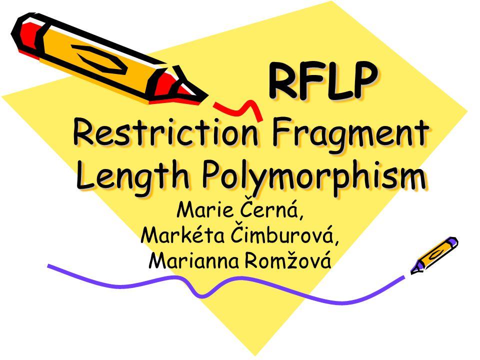 RFLP Restriction Fragment Length Polymorphism Marie Černá, Markéta Čimburová, Marianna Romžová