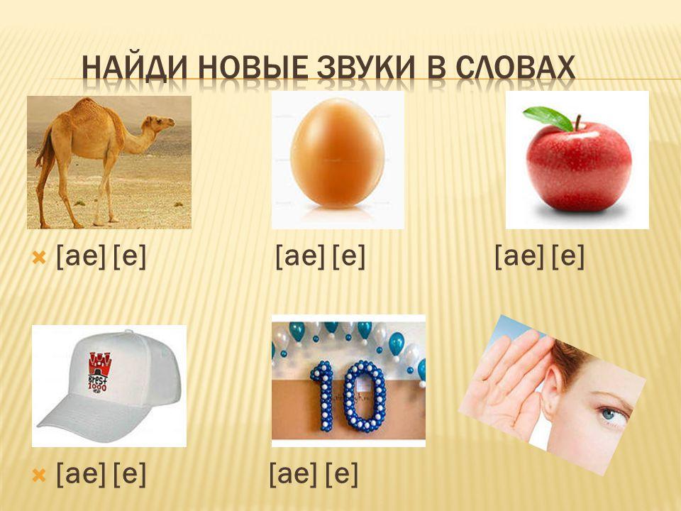  [ae] [e] [ae] [e] [ae] [e]  [ae] [e] [ae] [e]