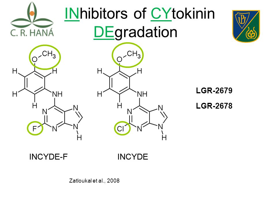 IIINhibitors of CYtokinin DEgradation Zatloukal et al., 2008 LGR-2679 LGR-2678