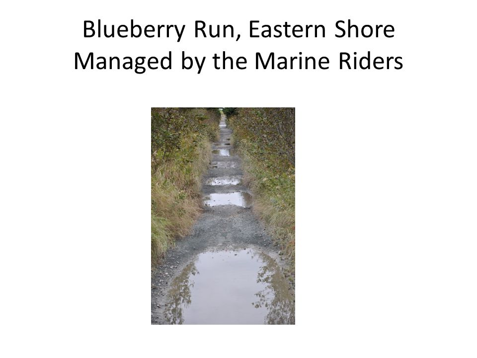 Blueberry Run, Eastern Shore Managed by the Marine Riders