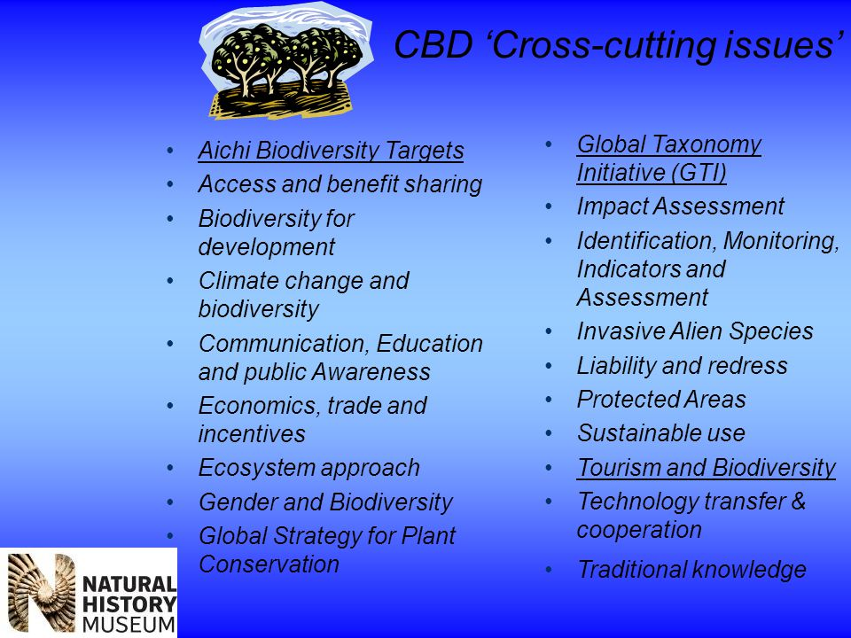CBD 'Cross-cutting issues' Aichi Biodiversity Targets Access and benefit sharing Biodiversity for development Climate change and biodiversity Communication, Education and public Awareness Economics, trade and incentives Ecosystem approach Gender and Biodiversity Global Strategy for Plant Conservation Global Taxonomy Initiative (GTI) Impact Assessment Identification, Monitoring, Indicators and Assessment Invasive Alien Species Liability and redress Protected Areas Sustainable use Tourism and Biodiversity Technology transfer & cooperation Traditional knowledge