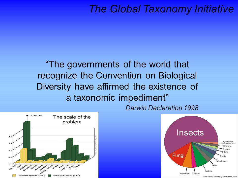 The Global Taxonomy Initiative The governments of the world that recognize the Convention on Biological Diversity have affirmed the existence of a taxonomic impediment Darwin Declaration 1998