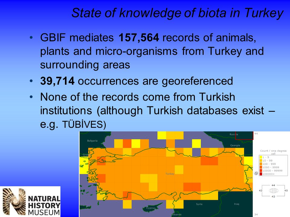 State of knowledge of biota in Turkey GBIF mediates 157,564 records of animals, plants and micro-organisms from Turkey and surrounding areas 39,714 occurrences are georeferenced None of the records come from Turkish institutions (although Turkish databases exist – e.g.