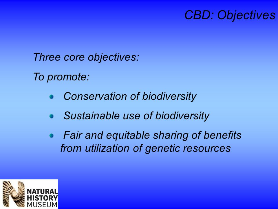 CBD: Objectives Three core objectives: To promote: Conservation of biodiversity Sustainable use of biodiversity Fair and equitable sharing of benefits from utilization of genetic resources