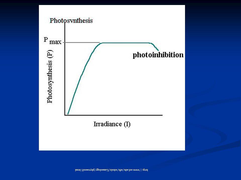 http://www.esf.edu/efb/schulz/Limnology/phytoecol1.html