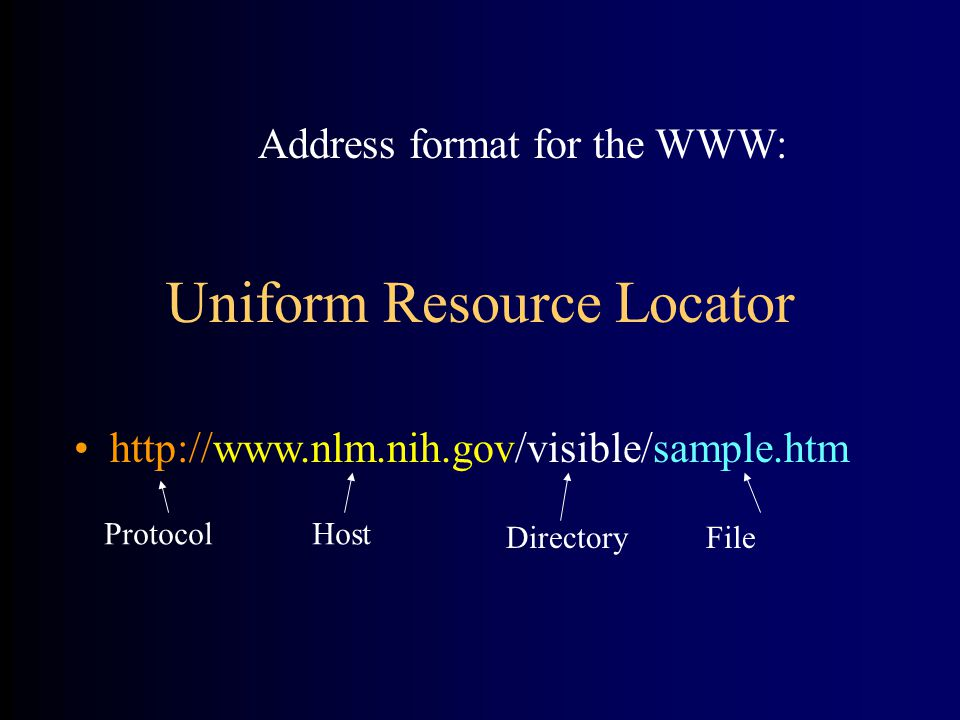 Uniform Resource Locator http://www.nlm.nih.gov/visible/sample.htm ProtocolHost DirectoryFile Address format for the WWW:
