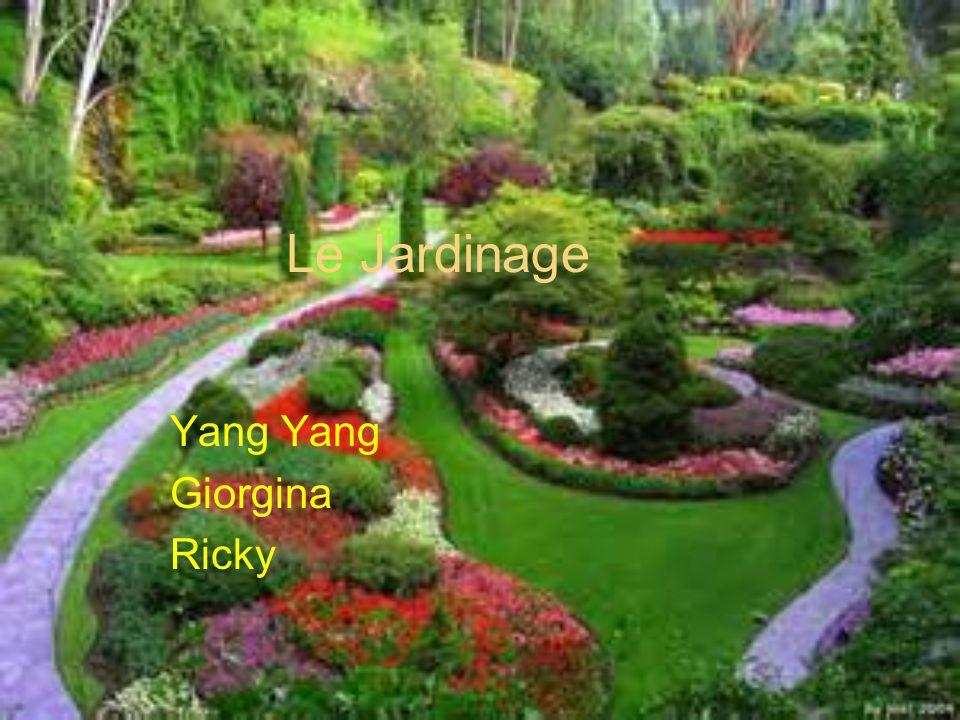 Le Jardinage Yang Giorgina Ricky