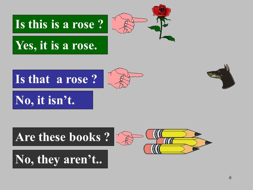 6 Is this is a rose . Yes, it is a rose. Is that a rose .